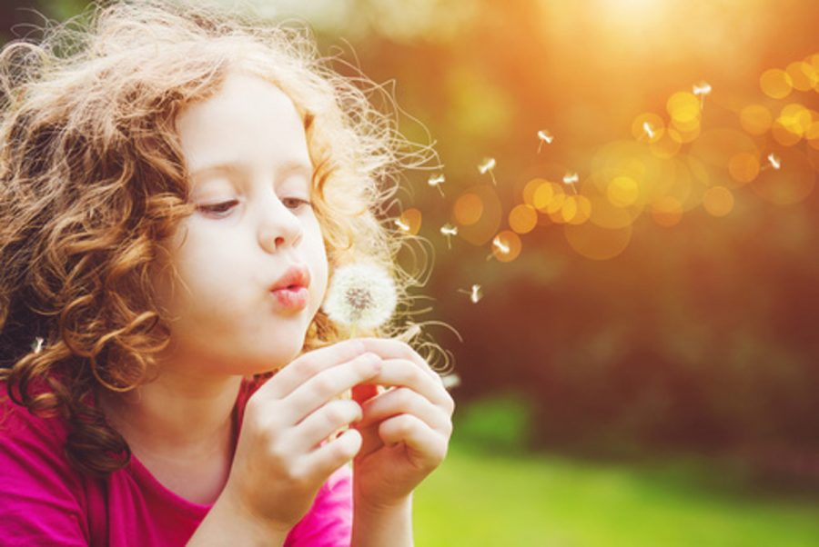 103526267 - Little curly girl blowing dandelion © ulkas